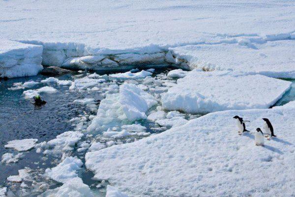 antartica-marie-filming