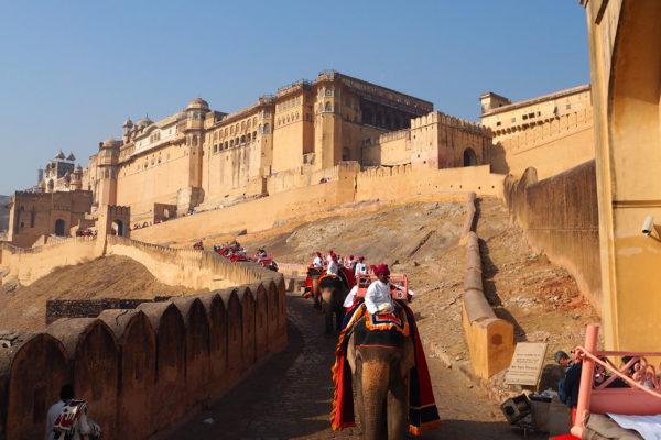 amber-fort-jaipur-3-india